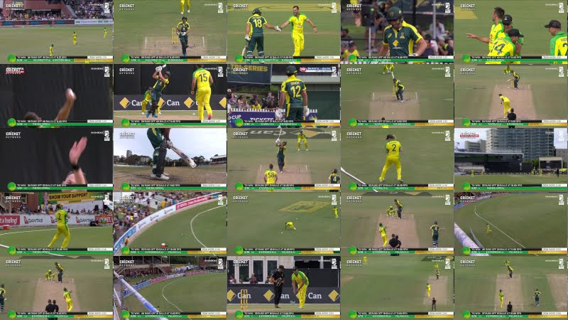 Cricket legends turn back the clock in Bushfire Bash charity match