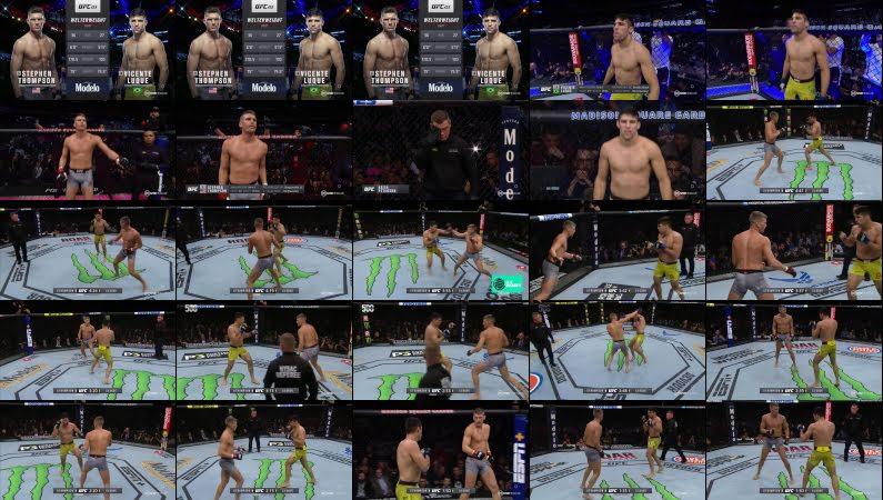 Stephen Thompson vs Vicente Luque | Highlight
