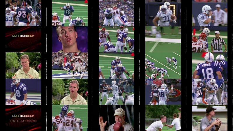Peyton Manning: A Perfectionist Mindset that Dominates the Toughest Job in Sports!